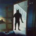 The Cattamonster Of The Elm Grove Barnesish Moonslight